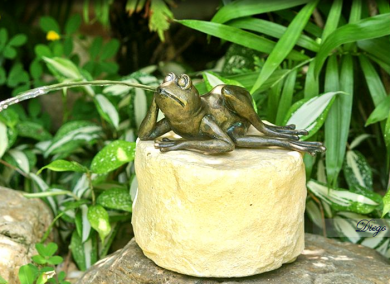 Frog Small Bronze Fountain - Diego