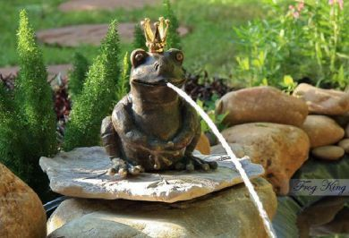 Frog Small Bronze Fountain - King