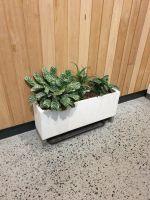 Premium Lightweight Terrazzo-  Oblong Planter(Size 1) 700 x 200 x 200H mm
