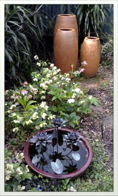 garden pots cheap. We Don\u0027t Sell Cheap Pots, Premium Quality And Designer Planters At Affordable Prices - All Year Round Garden Pots T